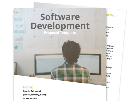 Software Development Proposal Template Proposable