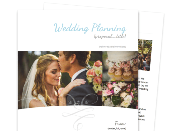 Wedding Planner Proposal Template | Proposable